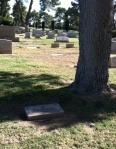bioff grave2