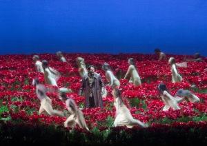 Polovtsian Poppy Field